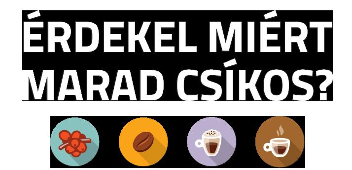 erdekel_miert_marad_csikos.png
